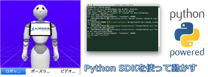 SDK, Pepper